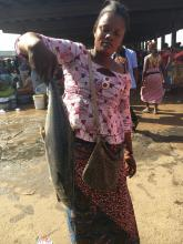 FishNet Alliance Lands in Togo