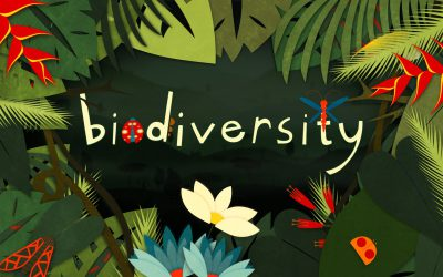 Biodiversity is Our Collective Heritage