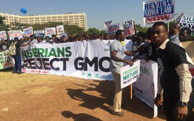 Nigerians Reject GMOs: Refuses to be Used For Experiments