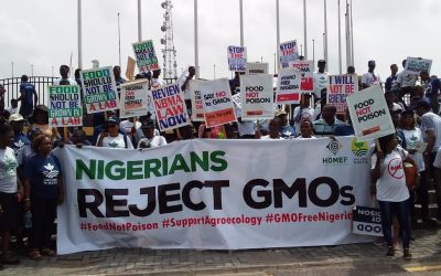 Petition to the Lagos State Governor on GMO Crops in Nigeria