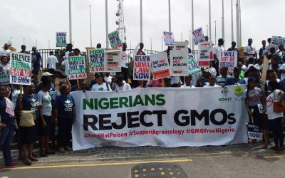 Ban GMOs – CSOs Demand in Lagos