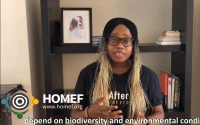 World Environment Day 2020: HOMEF Calls for Collective Efforts to Protect Biodiversity