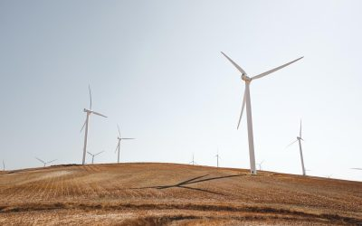 Stakeholders Propose Energy Alternatives for Africa