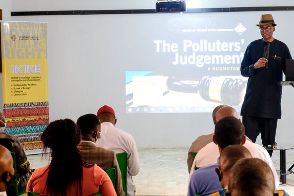 Abolishing Persistent Ecologic and Economic Crimes in the Niger Delta